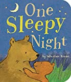 Braun, Sebastien: One Sleepy Night (Padded Board Books)