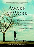 Carroll, Michael: Awake at Work: 35 Practical Buddhist Principles for Discovering Clarity And Balance in the Midst of Work's Chaos