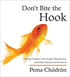 Chodron, Pema: Don't Bite the Hook: Finding Freedom from Anger, Resentment, and Other Destructive Emotions