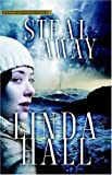 Hall, Linda: Steal Away: Teri Blake-Addison, P.I., Mystery
