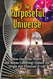 Calleman, Carl Johan: The Purposeful Universe: How Quantum Theory and Mayan Cosmology Explain the Origin and Evolution of Life