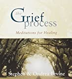 Levine, Stephen: The Grief Process: Meditations for Healing