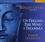 Goldstein, Joseph: Abiding in Mindfulness: On Feeling, the Mind and Dhamma