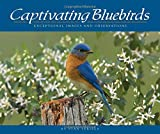 Stan Tekiela: Captivating Bluebirds: Exceptional Images and Observations