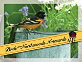 Stan Tekiela: Birds of the Northwoods Notecards