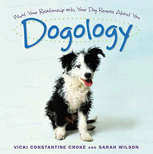 dogology-what-your-relationship-with-your-dog-reveals-about-you