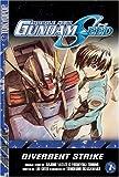 Hajime Yatate: Mobile Suit Gundam Seed, Vol. 1: Divergent Strike (Mobile Suit Gundam Seed (Novels))