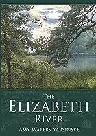 The Elizabeth River by Amy Waters Yarsinske