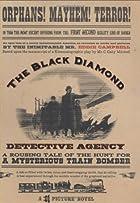 The Black Diamond Detective Agency by Eddie…