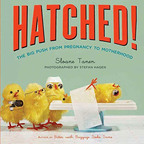 hatched-the-big-push-from-pregnancy-to-motherhood