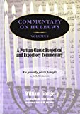 Masters, Peter: Commentary on Hebrews: Exegetical &amp; Expository