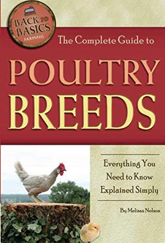 the-complete-guide-to-poultry-breeds-everything-you-need-to-know-explained-simply-back-to-basics-farming