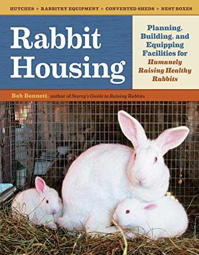 rabbit-housing-planning-building-and-equipping-facilities-for-humanely-raising-healthy-rabbits