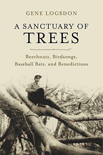 a-sanctuary-of-trees-beechnuts-birdsongs-baseball-bats-and-benedictions