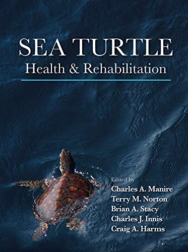 sea-turtle-health-rehabilitation