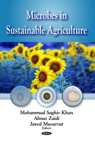microbes-in-sustainable-agriculture