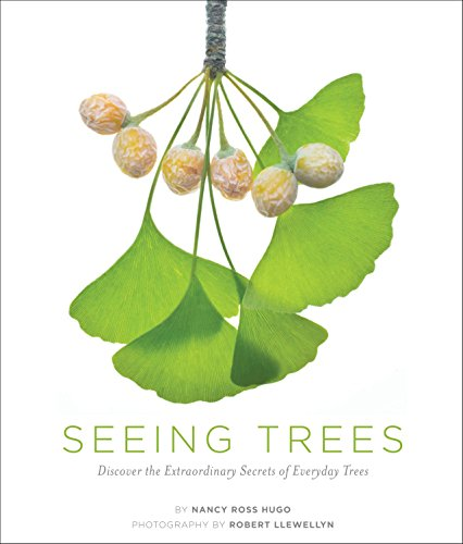 seeing-trees-discover-the-extraordinary-secrets-of-everyday-trees-seeing-series