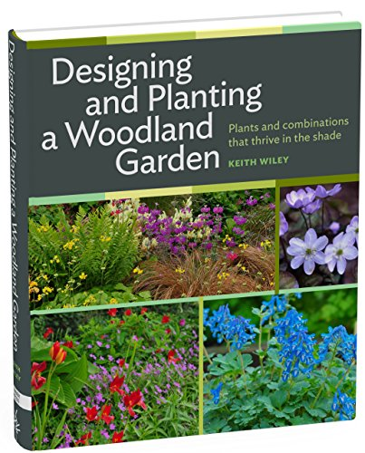 designing-and-planting-a-woodland-garden-plants-and-combinations-that-thrive-in-the-shade
