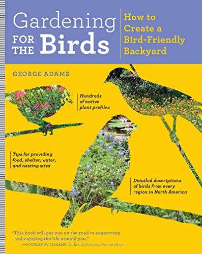 gardening-for-the-birds-how-to-create-a-bird-friendly-backyard