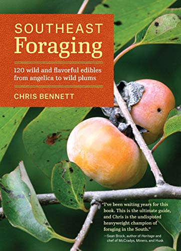 southeast-foraging-120-wild-and-flavorful-edibles-from-angelica-to-wild-plums-regional-foraging-series