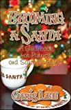 Lee, Chris: Becoming a Santa: A Guidebook for Parents and Santa's Helpers