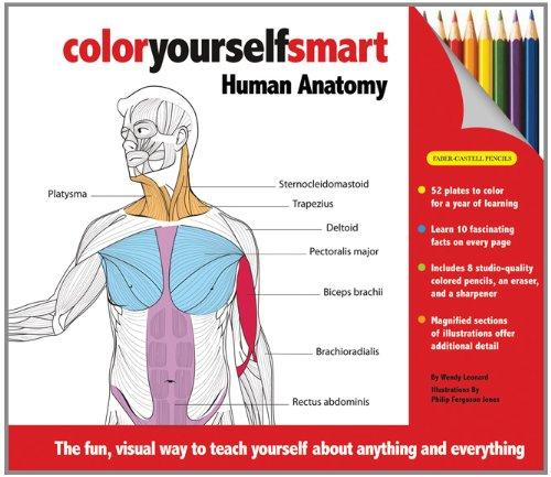 color-yourself-smart-human-anatomy