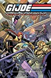 Seeley, Tim: G.I. JOE / Transformers Volume 3