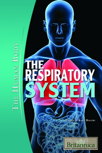 the-respiratory-system-the-human-body
