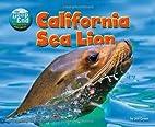 California Sea Lion (Deep End: Animal Life…