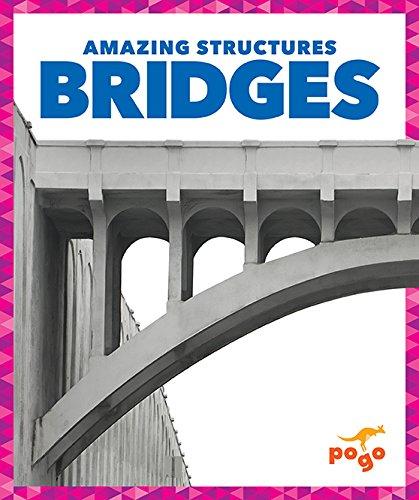bridges-pogo-amazing-structures