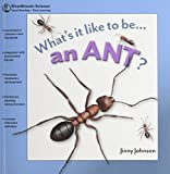 Johnson, Jinny: Whats it like to be... an Ant