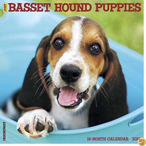 T2016 Just Basset Hound Puppies Wall Calendar