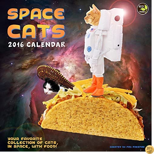 T2016 Space Cats Wall Calendar