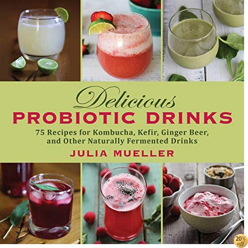 TDelicious Probiotic Drinks: 75 Recipes for Kombucha, Kefir, Ginger Beer, and Other Naturally Fermented Drinks
