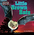 Little Brown Bats (In Winter, Where Do They…