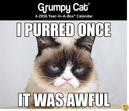 TGrumpy Cat Year-In-A-Box Calendar (2016)