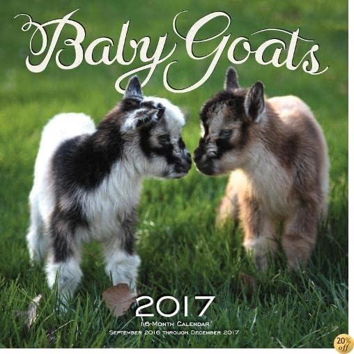 TBaby Goats 2017: 16-Month Calendar September 2016 through December 2017