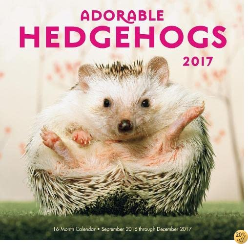 TAdorable Hedgehogs Mini 2017: 16-Month Calendar September 2016 through December 2017