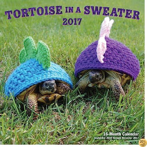 TTortoise in a Sweater 2017 calendar