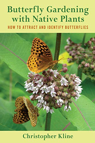 butterfly-gardening-with-native-plants-how-to-attract-and-identify-butterflies