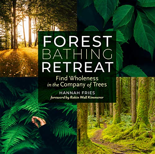 forest-bathing-retreat-find-wholeness-in-the-company-of-trees