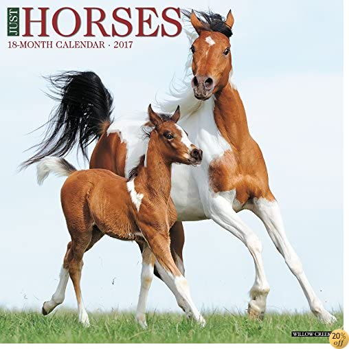 Just Horses 2017 Wall Calendar