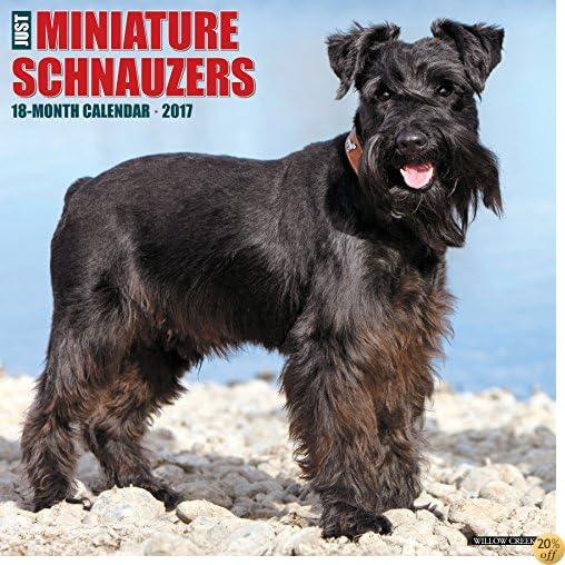 TJust Miniature Schnauzers 2017 Wall Calendar (Dog Breed Calendars)