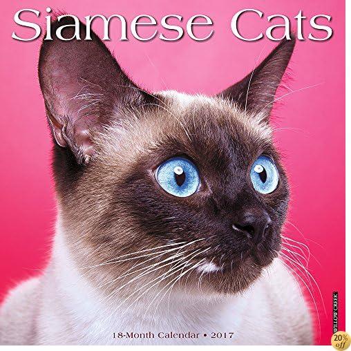 TSiamese Cats 2017 Wall Calendar