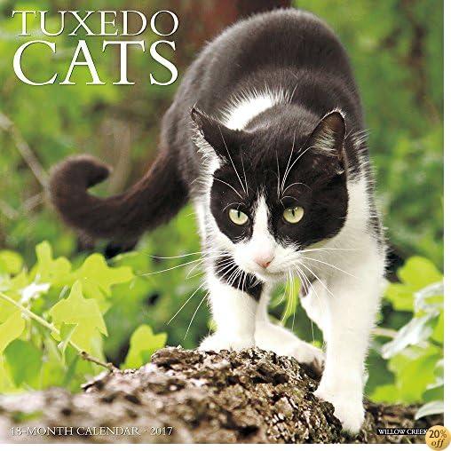 Just Tuxedo Cats 2017 Wall Calendar