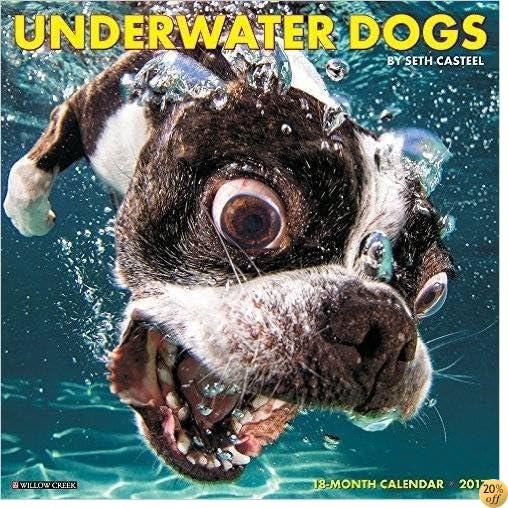 TUnderwater Dogs 2017 Wall Calendar