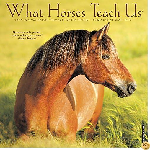 TWhat Horses Teach Us 2017 Wall Calendar