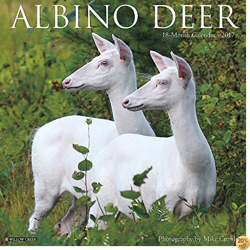 TAlbino Deer 2017 Wall Calendar