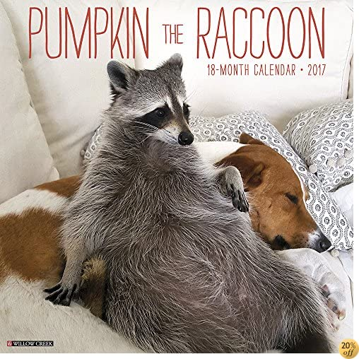 TPumpkin the Raccoon 2017 Wall Calendar