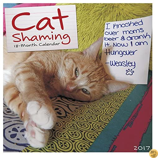 TCat Shaming 2017 Wall Calendar